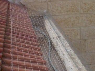 רשת יונים קפיץ מקפיץ על תעלת מרזב בטון