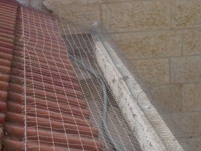 רשת יונים במרזב בטון